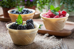 Blackberries, raspberries and blueberries in a waffle bowls. Stock Photography