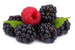 Blackberries with raspberries and green leaf isolated on white background. macro Stock Photos