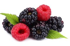 Blackberries with raspberries and green leaf isolated on white background. macro Stock Photo
