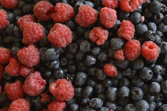 Blackberries with raspberries. Large amount of blackberries with raspberries Stock Photography