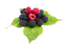 Blackberries and raspberries on leaves Royalty Free Stock Photo