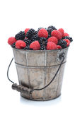 Blackberries and Raspberries in Pail royalty free stock images