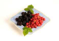 Blackberries and raspberries Royalty Free Stock Photography