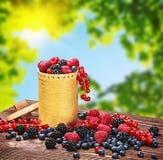 Blackberries, raspberries, red currants and blueberries in a bas Stock Image