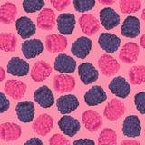 Blackberries and Raspberries Seamless Pattern Stock Photo