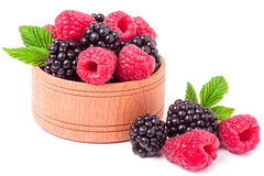 Blackberries and raspberries spilled from wooden bowl isolated on white background Stock Images