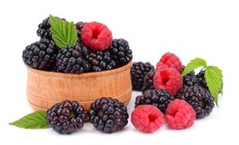 Blackberries with raspberries in wooden bowl isolated on white background Stock Photos