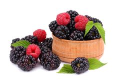 Blackberries with raspberries in wooden bowl isolated on white background Royalty Free Stock Photo