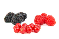 Blackberries, red currants and raspberries on Stock Image
