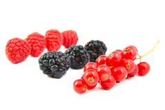 Blackberries, red currants and raspberries on Stock Photography