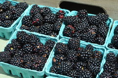 Blackberries. For sale in the outdoor market royalty free stock photos
