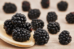 Blackberries scattered on a table. And some gathered on a wooden spoon Royalty Free Stock Image
