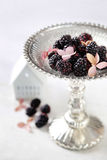 Blackberries on serving dish Royalty Free Stock Image