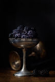 Blackberries in a silver old cup in dark style food photography Royalty Free Stock Images
