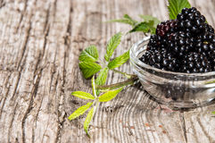 Blackberries in a small bowl Royalty Free Stock Images