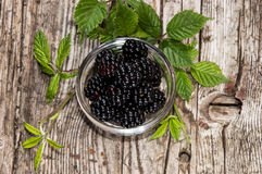 Blackberries in a small bowl Stock Photography