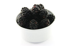 Blackberries in a Small Round Dish Royalty Free Stock Image