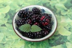 Blackberries. Some blackberries in a bowl Stock Photo
