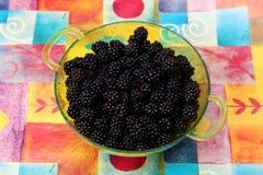 Blackberries. Some blackberries in a bowl Royalty Free Stock Photos