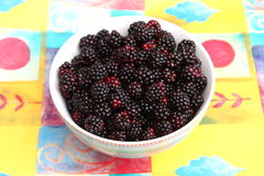 Blackberries. Some blackberries in a bowl Royalty Free Stock Photography