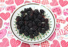 Blackberries. Some sweet blackberries on a plate Royalty Free Stock Photography