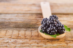 Blackberries in spoon on wooden background Royalty Free Stock Photography