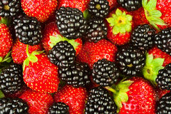 Blackberries strawberries closeup Stock Images