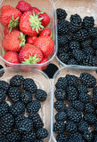 Blackberries and strawberries Royalty Free Stock Photos