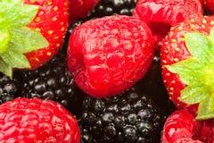 Blackberries strawberries raspberries closeup Stock Photography