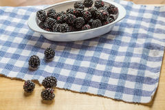 Blackberries on Table in Window Light Royalty Free Stock Images