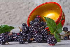 Blackberries in traditional Russian dish Stock Images