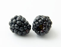 Blackberries. Two blackberries against white background stock photos