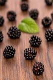 Blackberries in vertical format Stock Images