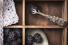 Blackberries, vintage kitchen tongs Stock Photos