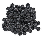 Blackberries. On a white background stock photography