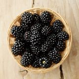 Blackberries on white background stock photos