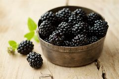 Blackberries on white background royalty free stock image