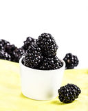 Blackberries in a white bowl isolated on white Royalty Free Stock Image