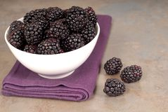 Blackberries in a white bowl on a purple napkin with blackberrie Stock Photo
