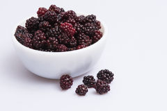 Blackberries. In a white bowl with white background Stock Image