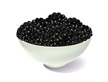 Blackberries. In a white bowl on white background Stock Image