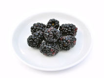 Blackberries on white dish Stock Images