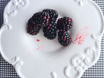 Blackberries on a white dish Stock Images