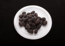 Blackberries on White Plate on Black Background Stock Images
