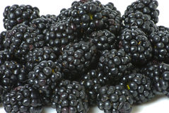 Blackberries on a white plate Royalty Free Stock Images