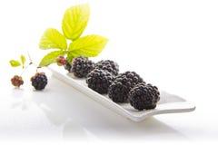 Blackberries in a white porcelain base. Blackberries on a porcelain base on a white background Stock Photos
