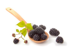 Blackberries in a wooden spoon, side view. Blackberries in a wooden spoon on a white background side view Stock Photography