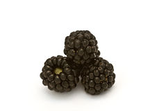 Blackberries XIII Stock Image