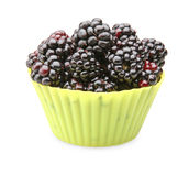 Blackberries in yellow silicon cup Royalty Free Stock Photo