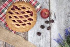 Blackberry και πίτα μήλων με τα φρούτα Στοκ φωτογραφία με δικαίωμα ελεύθερης χρήσης